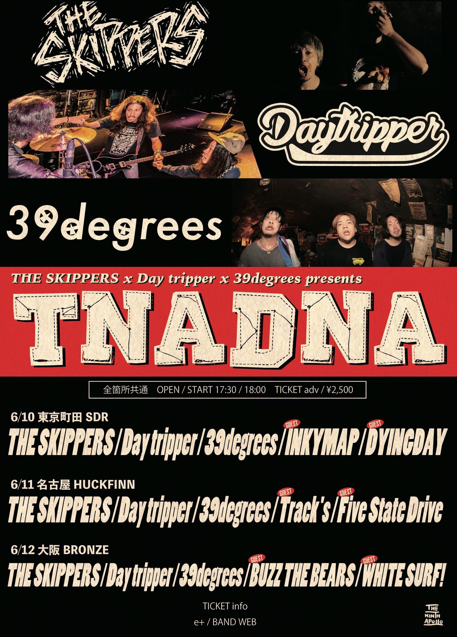 """THE SKIPPERS & Day tripper & 39degrees pre. """"TNADNA"""""""
